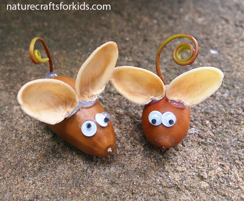 kids-nature-craft-mouse-mice-acorns