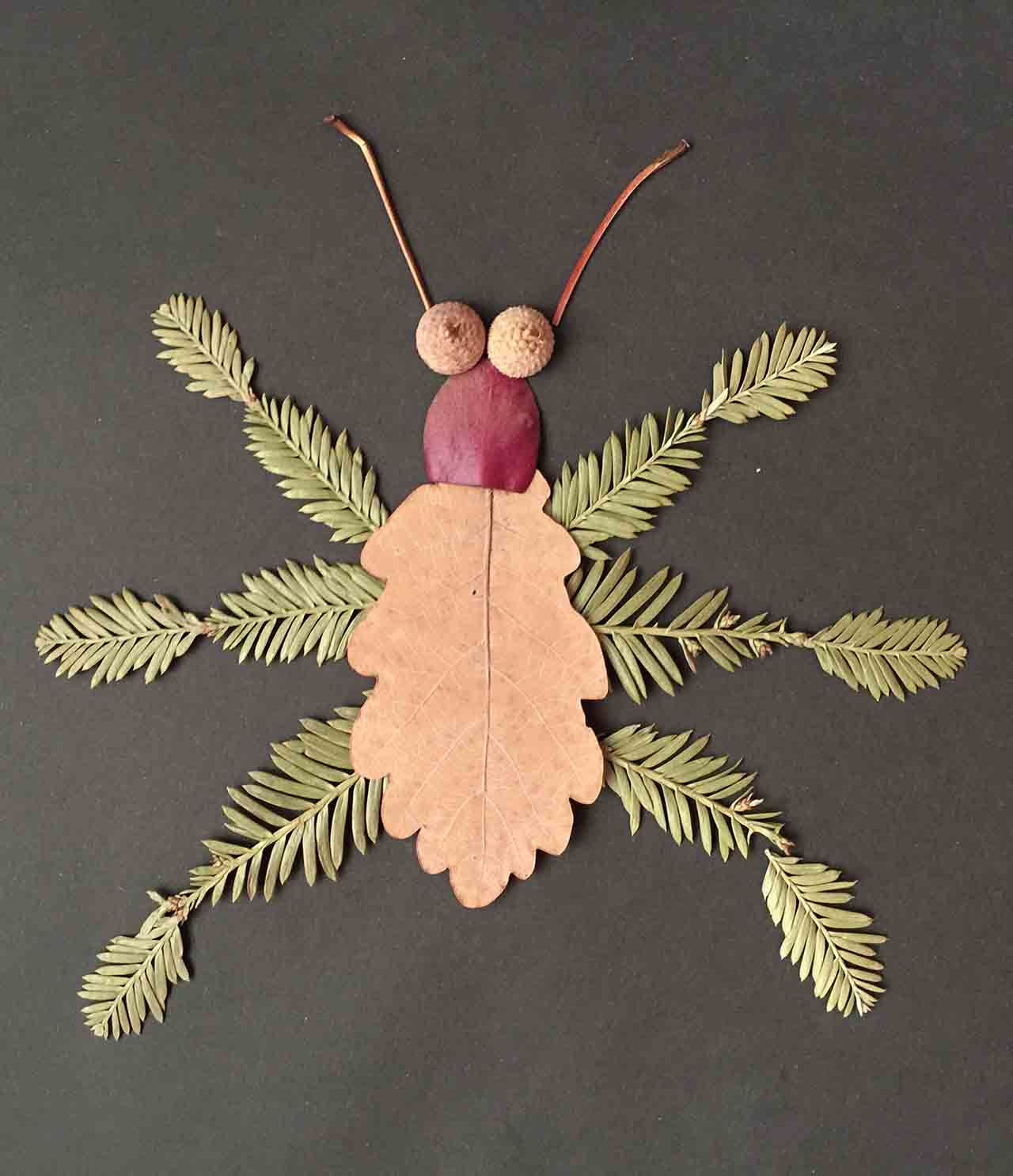 Insect Craft Ideas