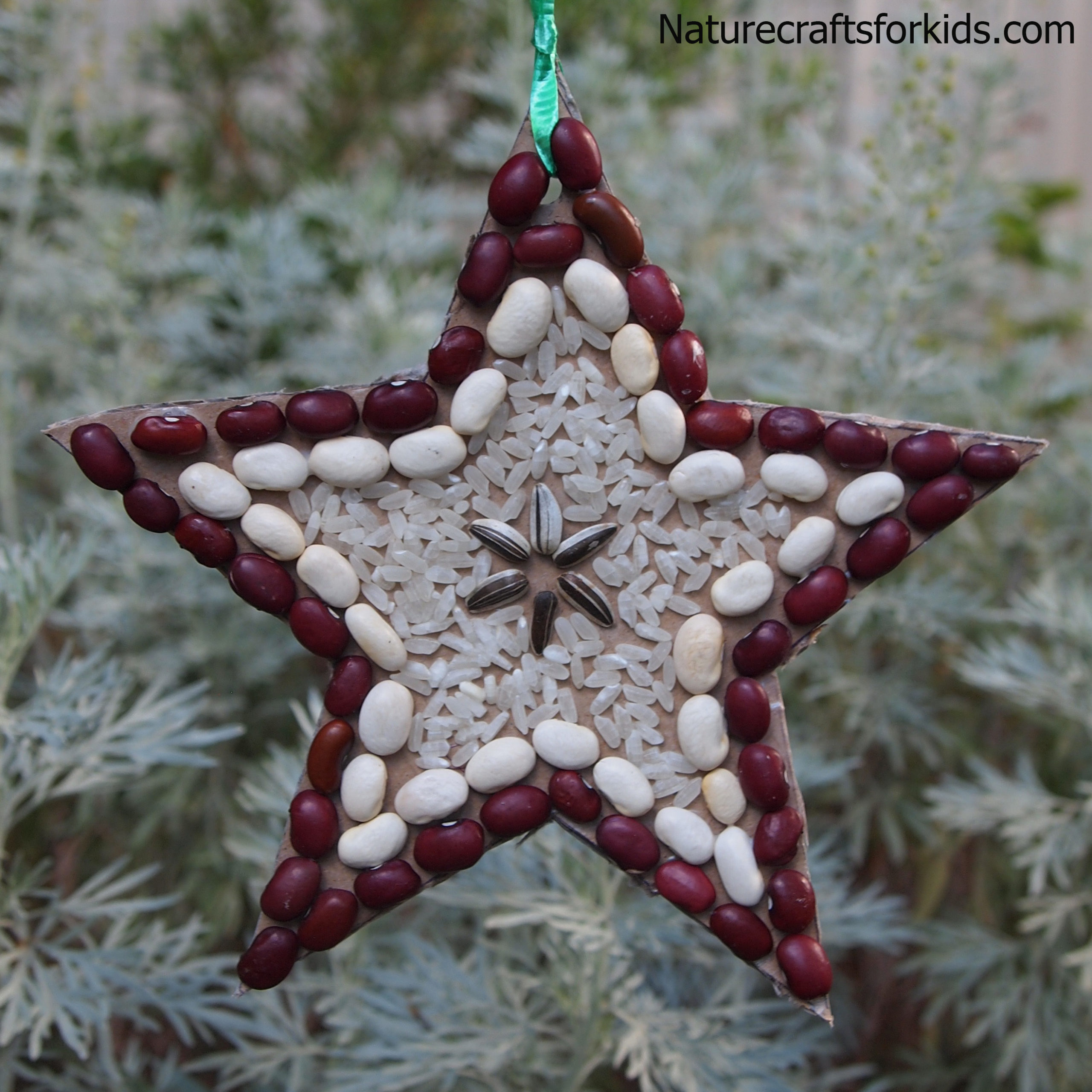 Christmas Nature Craft Seed Collage Star